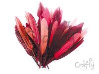 Aranžérske pierka 10g - červené odtiene