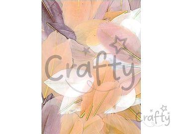 Aranžérske pierka hladké - 10g - svetlohnedý mix