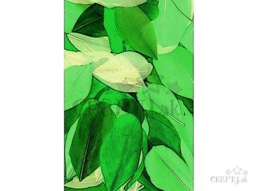 Aranžérske pierka hladké - 10g - zelený mix