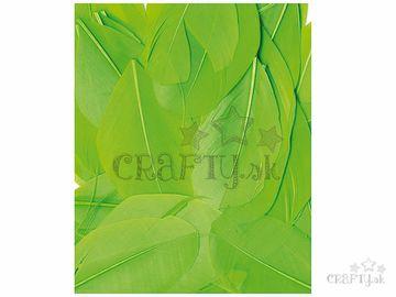 Aranžérske pierka hladké - 3g - neónové zelené