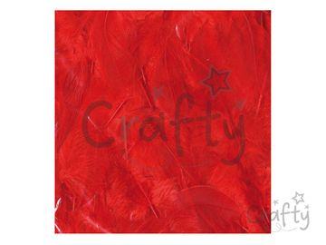 Dekoračné aranžérske pierka 10g - červené