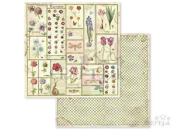 Obojstranný scrapbook papier 30,5cm - jarný herbár