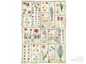 Ryžový papier A3 - herbár Botanical