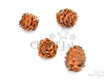 Šišky - Sabulosum - 4 ks - oranžovohnedé