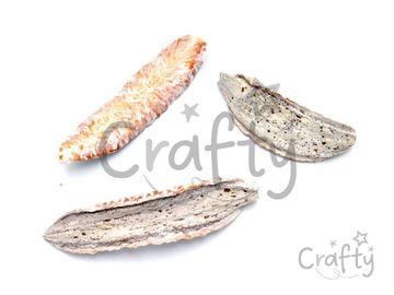 Sušený plod - Estrela - vintage biela